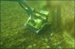 Robot per piscine naturali - biologiche Dolphin Bio