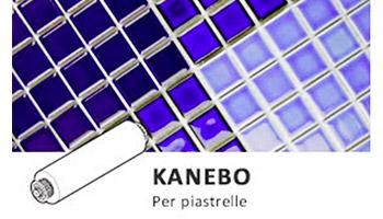 Spazzole Kanebo Hayward per robot pulitore AquaVac Drive