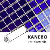 spazzole KANEBO robot